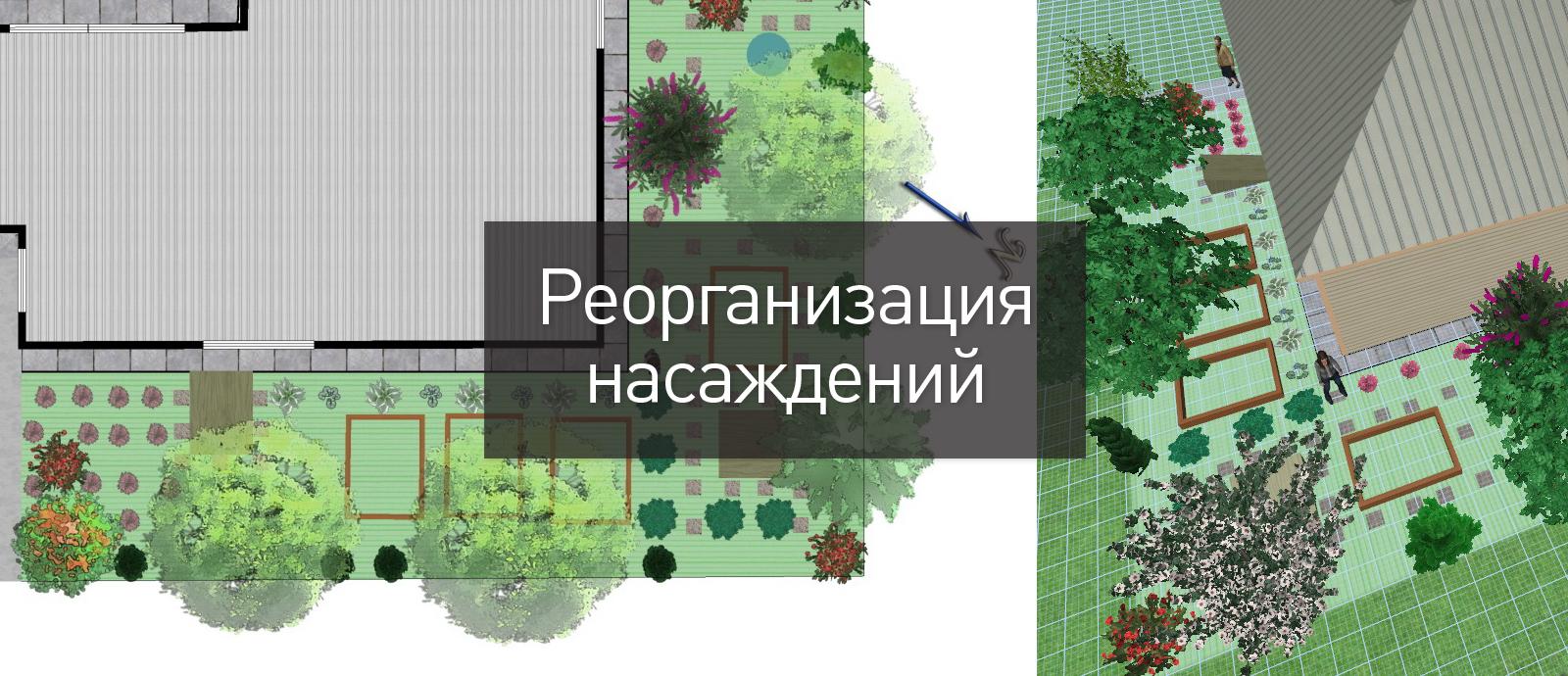 Реорганизация растений на существующем участке