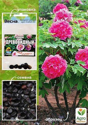 """Півонія """"деревна"""" (рожева) (насіння) ТМ """"Весна"""" 7шт"""